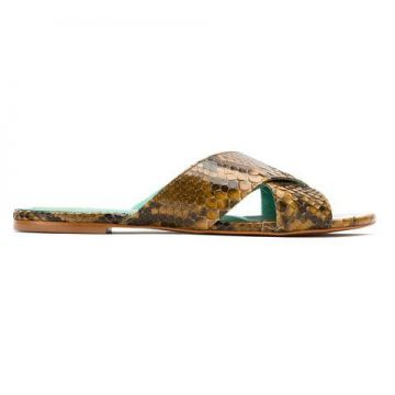 Rasteirinha Cruzada python - Blue Bird Shoes