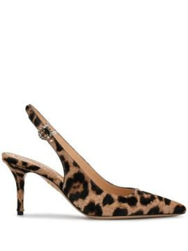 Pointed Leopard Print Pumps - Charlotte Olympia