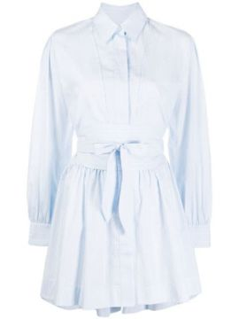 Full Shape Striped Shirt Dress - Alexa Chung