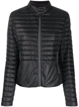 Fitted Padded Jacket - Colmar