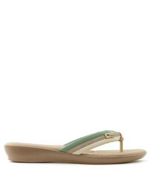 Chinelo Piccadilly bicolor Verde