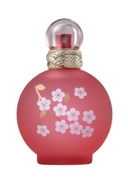 Perfume Fantasy In Bloom Femnino Eau De Toilette 100ml - Bri