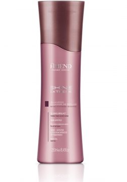 Amend Shampoo Shine Extreme 250ml Amend