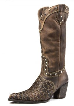 Bota Texana Capelli Country Montaria Cano Alto Bico Fino Co